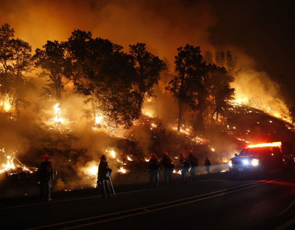 MIDDLETOWN, CA - SEPTEMBER 13: Firefighters with the Marin County Fire Department's Tamalpais Fire Crew monitor a backfire as they battle the Valley Fire on September 13, 2015 near Middletown, California. The fast-moving fire has consumed 50,000 acres after growing 40,000 acres in twelve hours and is currently zero percent contained.  (Photo by Stephen Lam/ Getty Images)